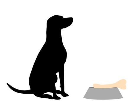 Dog feeding 向量圖像
