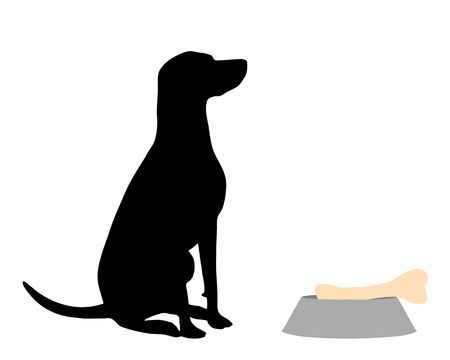 Dog feeding Illustration