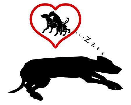 rampage: Dog dreams