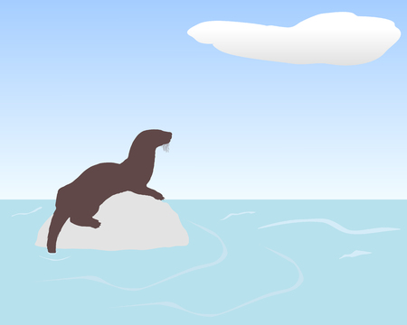 Otter on rock in water Illustration