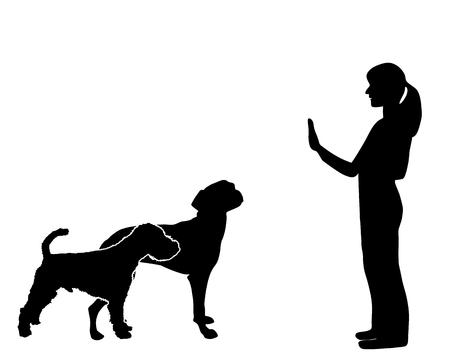 Dog Training Vector