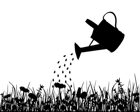 watering pot: Watering pot and meadow Illustration