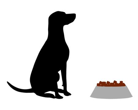 obedience: Dog feeding Illustration