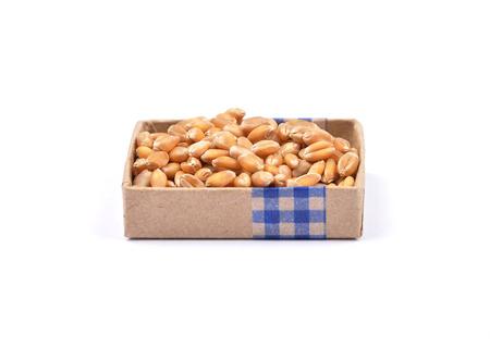 Wheat on white photo