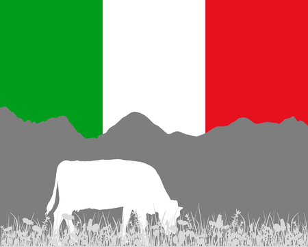 herbage: Cow alp and italian flag Illustration