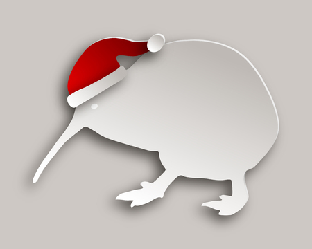 Kiwi with christmas cap