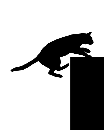 cat silhouette: Cat on white