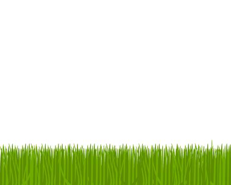 Meadow Ilustração