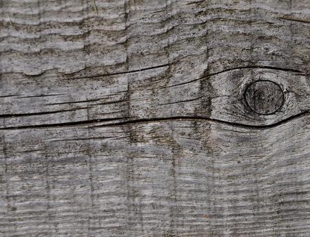 knothole: Wooden background Stock Photo