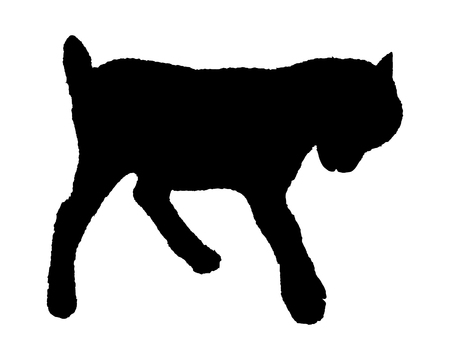 rampage: Kid silhouette Illustration