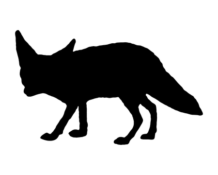 fox: Fennec fox silhouette Illustration