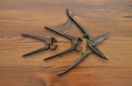 pincers: Pair of snips and pincers Stock Photo