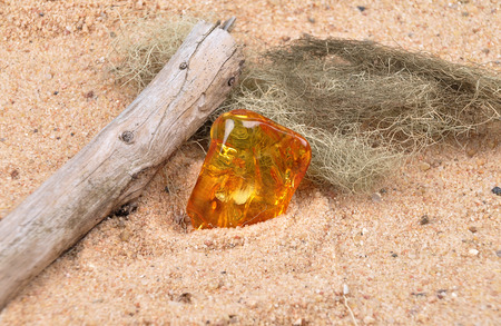 inclusions: Amber on beach