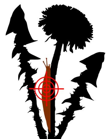 vermin: Aim at slugs on dandelion