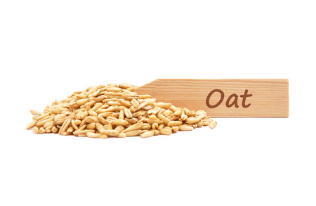 describable: Oat on plate Stock Photo