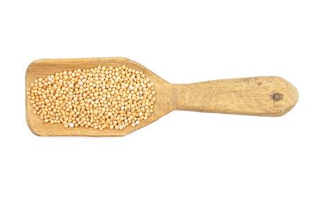 describable: Mustard seeds on shovel Stock Photo