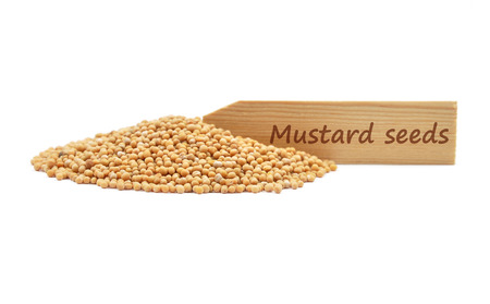 describable: Mustard seeds at plate