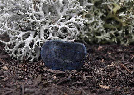 quarz: Dumortierite on forest floor