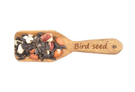 describable: Bird seed on shovel Stock Photo