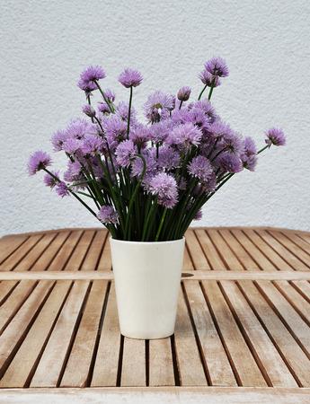 cebollines: cebolletas en flor