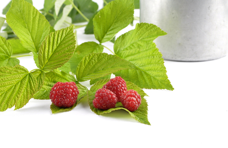 Red raspberries with tin bucket and leaves on white 스톡 콘텐츠