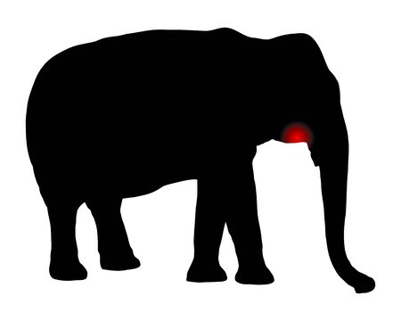 Elephant with toothache on white Vecteurs
