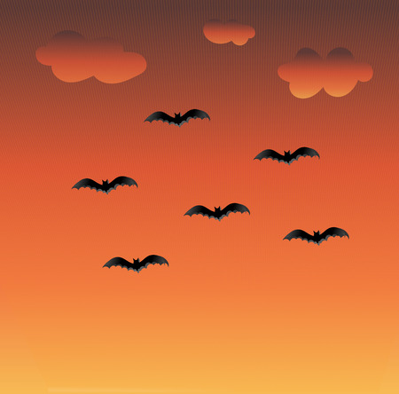 flying bats: Sunset colors background with clouds and flying bats