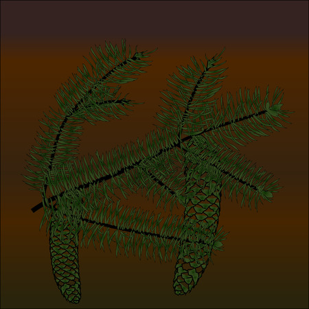 cons: Spruce branch with yet green cons on the shades of brown background