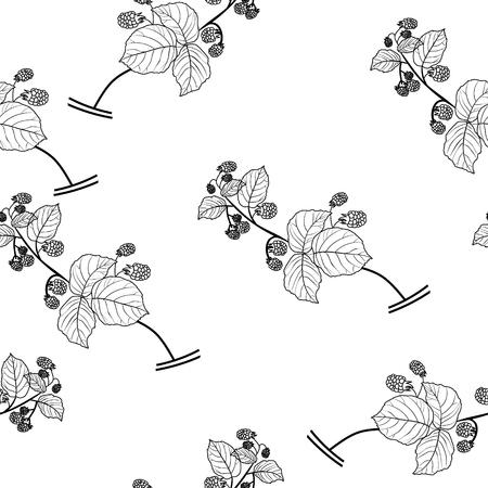 Wild raspberries seamless vector background