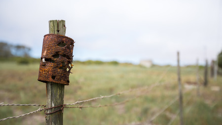 target practice: Rusted Tin Can used for Target Practice sits on an old fence