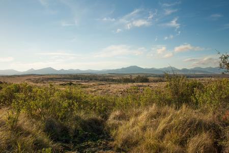 厚さの茂みや南アフリカ共和国の遠くの山々