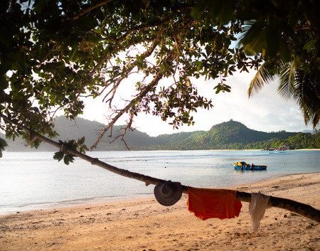 Clothes drying on a branch on a Seychelles beach with a blue and yellow boat behind