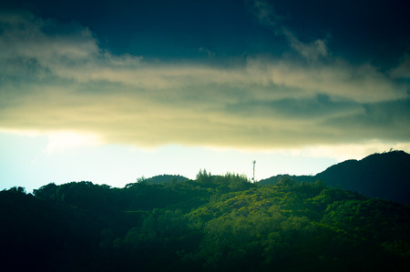 Green jungle canopy with communication tower and cloudy sky in the Seychelles