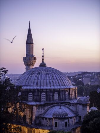 dome of mosque in Istanbul with bird Standard-Bild