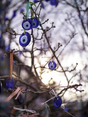 blue glass evil eye trinkets hanging in a tree in cappadocia