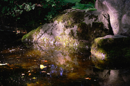 shadowy: Mossy Boulders in Water Part of a Japanese Garden