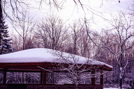 barren: Winter Snowy Park with Barren Trees and a Pavilion Stock Photo