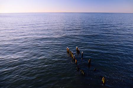 breakwaters: Sea, Sky, Horizon at Sunset; Wooden Breakwaters with Seagulls Sitting on Them in the Foreground