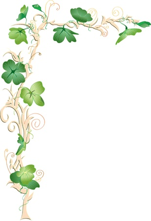 saint patricks day: Shamrock frame corner