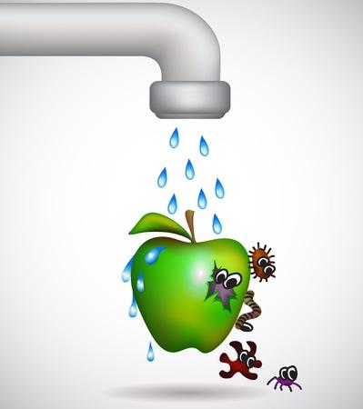 박테리아에서 녹색 사과를 세척 일러스트
