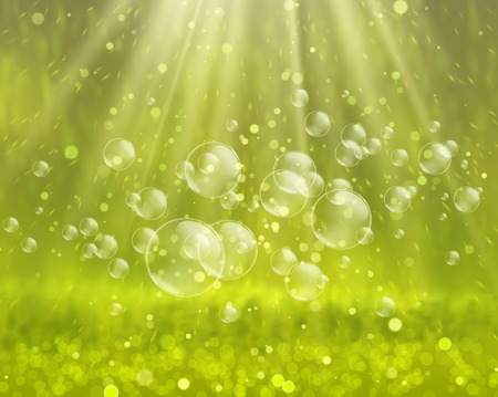 Soap bubbles on a nature background vector