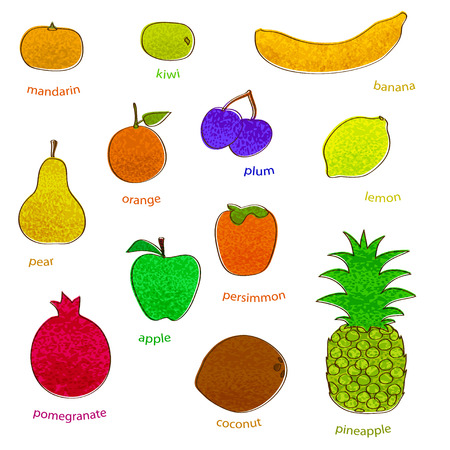drow: fruit set with texture  simple vector eps 10