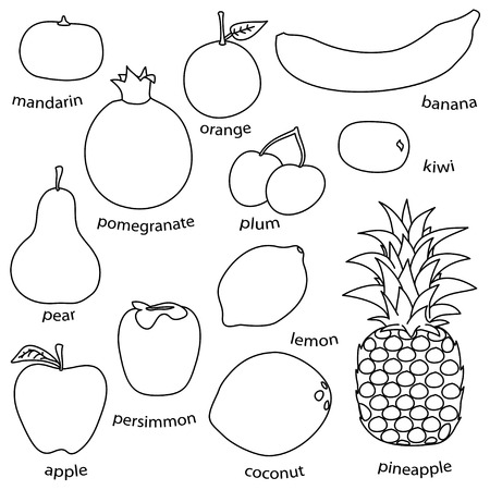 drow: monoline fruit set on white background  simple vector
