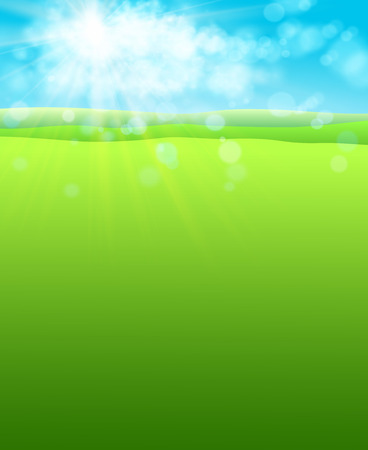 Summer warm background with sun and green field of grass. Vector. Ilustrace