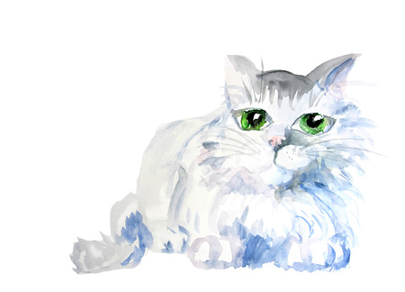 watercolor cat blue color vector illustration. eps 10 Illustration