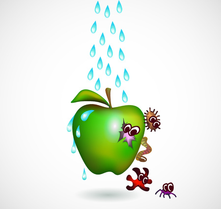 Washing green apple from bacterium illustration. eps 10