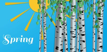 Spting illustration. Shape of birch, white and black on the background in paper style with shadows and 3d. Vector. Ilustracja