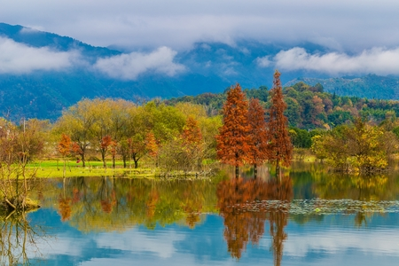 lakeview: Odd wild Lake