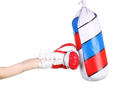studious cute little boxer training