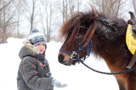 Little boy feeding horses outdoors